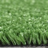 Cheap Price Artificial Grass, Synthetic Grass, Synthetic Turf, Tennis Grass Mat