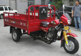 2015 Closed Cabin Cargo Tricycle Three Wheel Motorcycle