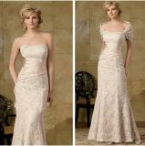 Lace Evening Formal Gowns Sheath Mother′s Wedding Dresses Z4005