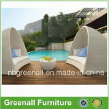 Outdoor Lounge for Bed / Sofa with Pillows (GN-3631L)