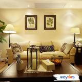 Maydos Anti Scrub Durable House Interior Painting