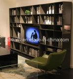 Modern Style High Glossy Painting Bookshelf (SM-TV06A)