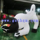 Halloween Black Cat Model/