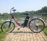 Supermarket Model City-Bike for Lady