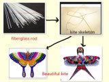 Cheap Fiber Glass Kite Skeleton with Good Quality