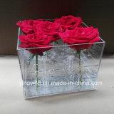 New 36hole Acrylic Flower Display Case