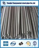Seamless Stainless Steel Pipe and Tube for Food/Beverage/Dairy