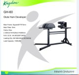 Fitness Equipment Bench/Strength Machine/Glute Ham Developer