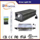 630W HID Electronic Ballast Kit for CMH Lamp