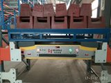 Full Automatic with Pallet Runner and Shuttle Carrier