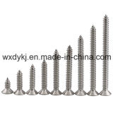 Stainless Steel 304 316 Self Tapping Drilling Screw