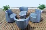 Garden Sofa/Outdoor Furniture/Rattan Furniture/Wicker Furniture (FT-S1043)