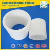 Plastic Tower Packing Raschig Ring for Petroleum (PE, PP, PVC, CPVC, PVDF)