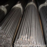 Round Bar of Stainless Steel (309S)