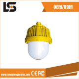 Smart Finish Die-Casting Explosion-Proof LED Lamp Covers