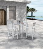 Outdoor Patio Furniture Effiel Dining Plastic Wood Home Hotel Bar Office Chair and Table (J676)