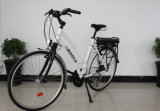 High Quality Electric Bike with Middle Driven Motor (M730Z)