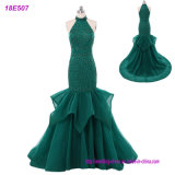New Modal Sexy Ladies Style Chiffon Cheap Evening Gowns