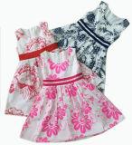 Summer Children Apparel Girls Princess Dress in Hot Sale (SQD-107)