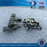 Sintered Tungsten Carbide Saw Tips (C2)