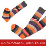 100% Cotton of Woman Coloful Tube Sock (UBM1043)