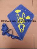 Childrens Kites for Good Education/ Educational Flying Kites
