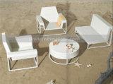Modern Style Outdoor Wicker/Rattan Sofa Set (MTC-028)
