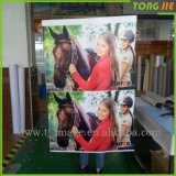 Outdoor Advertising Cheap Price 3m Sticker Printing
