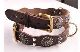 Leather Sharp Spikes Big Dog Pet Collar for Pitbull S M L