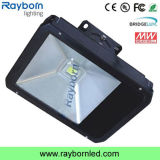 80W LED Outdoor Flood Lighting with Tunnel Lamp
