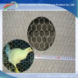 Hexagonal Wire Mesh Chicken Mesh