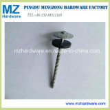Hot-Dipped Galvanized Umbrella Head Twisted Roofing Nails