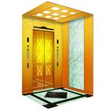China Top Passenger Elevator with FUJI Quality