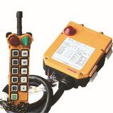 Industrial Radio Remote Control System Wireless Crane Controller (F24-10D)