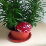 Auto Glass Watering Globes for Plants Watering Tools