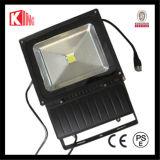 LED Bridgelux 100W Outdoor CE LVD EMC PSE COB LED Landscape Light