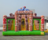Inflatable Double Dry Slide, Inflatable Theme Slide (B4088)