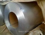 Competive Price Prime Galvanized Steel Coil/Gi