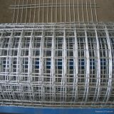 Electro Galvanize Rebar Welded Wire Mesh