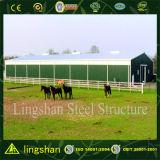 Steel Building Steel Indoor Riding Arena for Indoor Activities