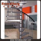 Stainless Steel and Wood Helical Staircases for Indoor (SJ-3009)