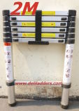 Telescopic Ladder (DLT212B)
