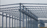 Steel Structure Building/Steel Structure Framework (SS-117)