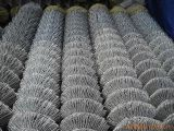 Low Price Galvanized Chain Link Fence with Good Quality