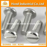 Low-Cost Supply of Stainless Steel Slotted Pan Head Screw DIN85