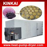 High Efficiency Vegetable Dehydrator Oven, Carrot Drier