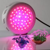 2017 New Manufacturing Rechargeable Indoor Grow Plant Lamp