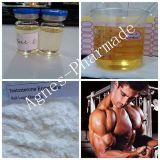 99% Purity Testosterone Enanthate Bodybuilding Injection