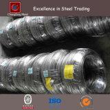Ss304 Stainless Steel Wire Rod (CZ-W61)