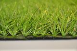 Sb Shape Artificial Grass for Soccer Football China Forestgrass